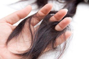 Liệu trình điều trị rụng tóc trong giải pháp phục hồi Ballvic Matrix Hair