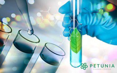 Petunia Charm Center - những khác biệt của hệ thống làm đẹp ứng dụng công nghệ sinh học