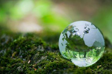 Công nghệ sinh học - Xu hướng làm đẹp thân thiện với môi trường