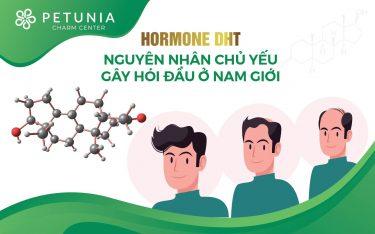 Hormone DHT - Nguyên nhân chủ yếu gây hói đầu ở nam giới